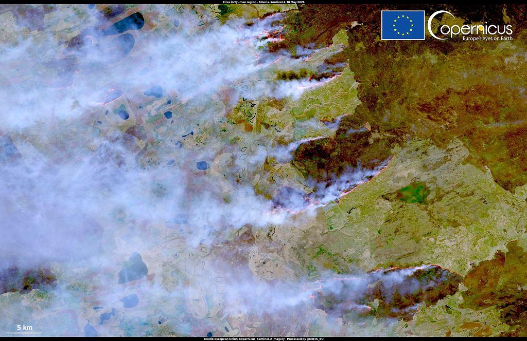 Pożary w obwodzie tiumeńskim na Syberii.