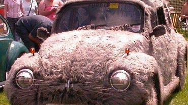 Garbus z futerkiem? Cóż, bez wątpienia sierść ociepla wizerunek auta, które nie wszystkim dobrze się kojarzy
