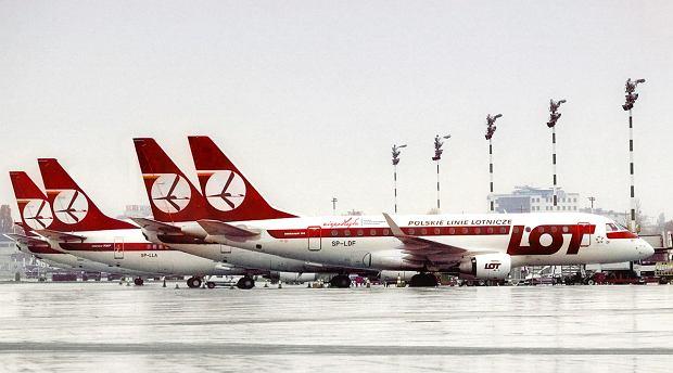 Tak mogłyby wyglądać samoloty LOT w nowym malowaniu