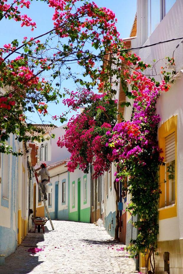 Wypoczynek w Algarve czy wycieczka objazdowa? Portugalia poleca się na sezon 2020!