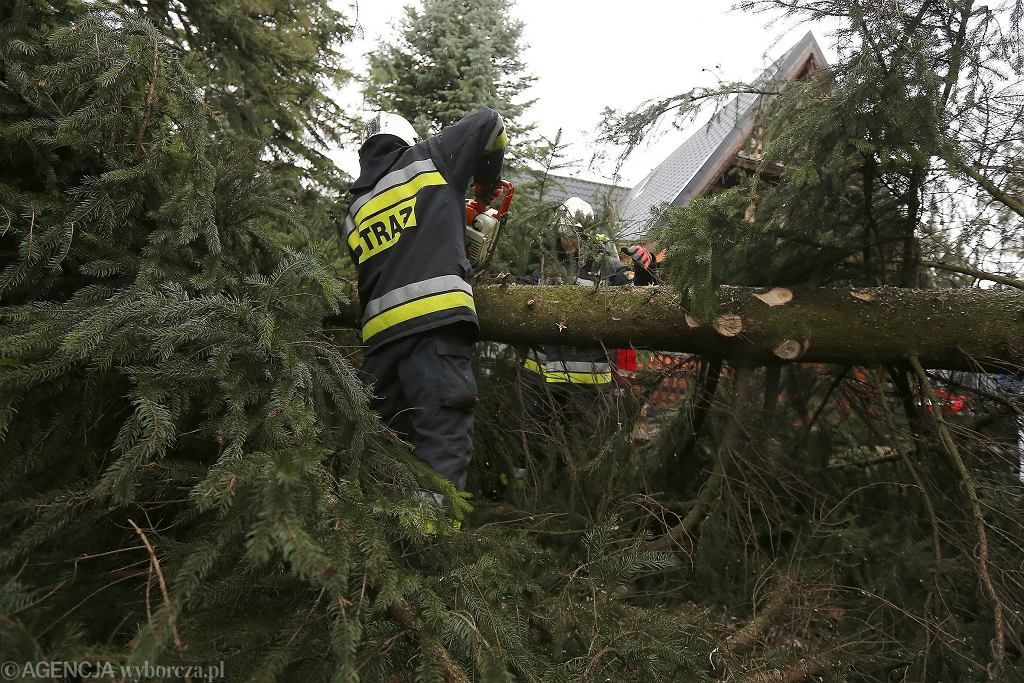 Strażacy usuwają powalone drzewa w Zakopanem (zdjęcie archiwalne)