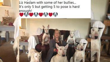Liz Haslam i jej psy