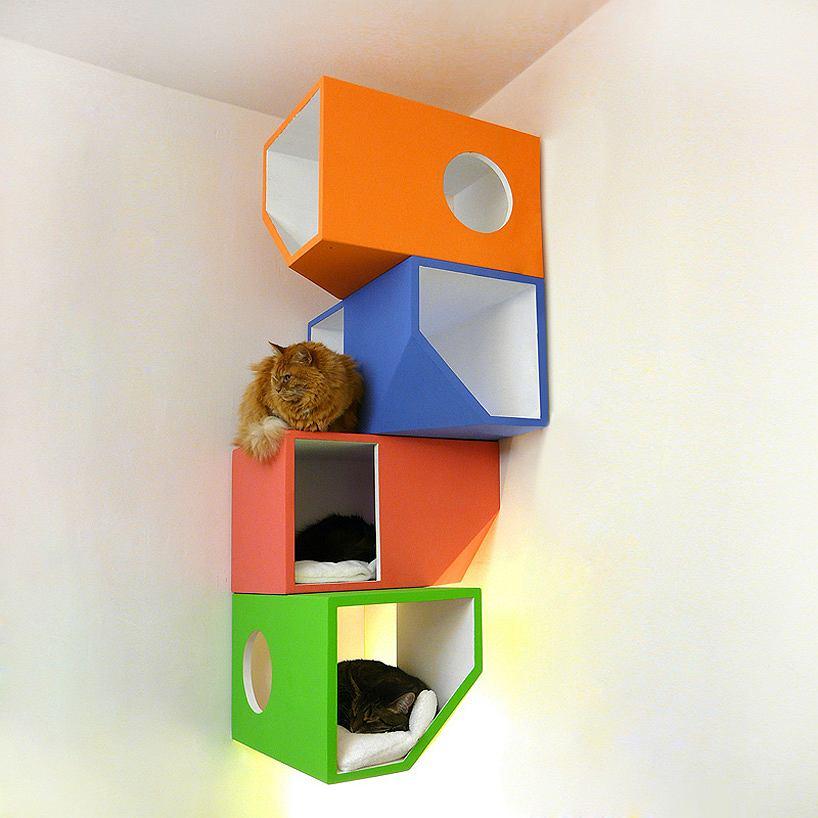 Czteropiętrowy apartament zawieszany na ścianie. Siedzący tu kot może obserwować świat z dystansu, co bardzo lubi.