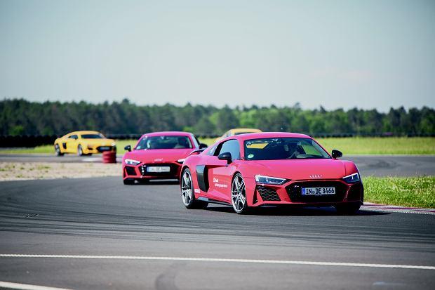 Audi R8 na torze - przyjemne z pożytecznym