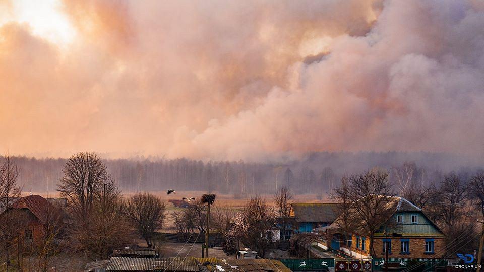 Walczą z wielkimi pożarami wokół Czarnobyla.