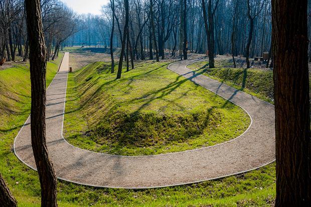 Zdjęcie numer 24 w galerii - Park Tysiąclecia w Sosnowcu w trakcie rewitalizacji.