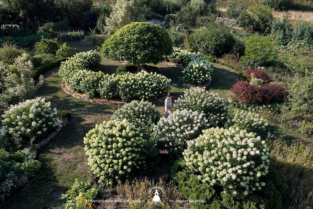 Przykład ogrodu ekologicznego - Anielskie Ogrody