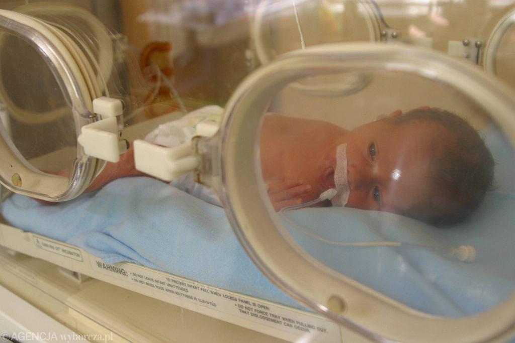 Noworodek w szpitalu [zdjęcie ilustracyjne]