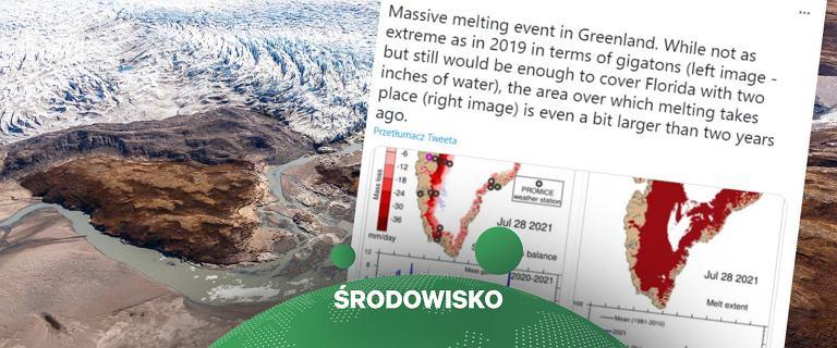 """Grenlandia. """"Masywne"""" topnienie lodu, w dzień 8,5 mld ton. I rekordowy upał"""