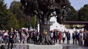 W Wieleniu stanął pomnik drzewa