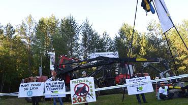 Po raz trzeci w ostatnim czasie aktywiści Greenpeace Polska, Fundacji Dzika Polska i przedstawiciele lokalnej społeczności rozpoczęli blokadę ciężkiego sprzętu dokonującego rzezi w Puszczy Białowieskiej