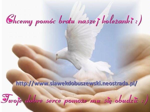 https://bi.im-g.pl/im/fotomon/ludzie/f640x640/99/10/572a6c9a54.jpg